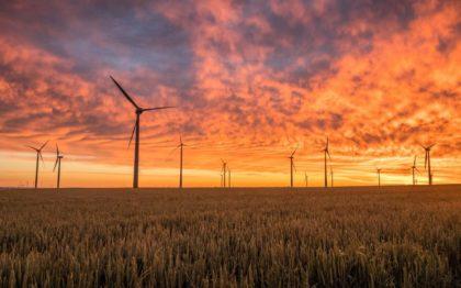 Windräder auf einem Feld bei Sonnenuntergang